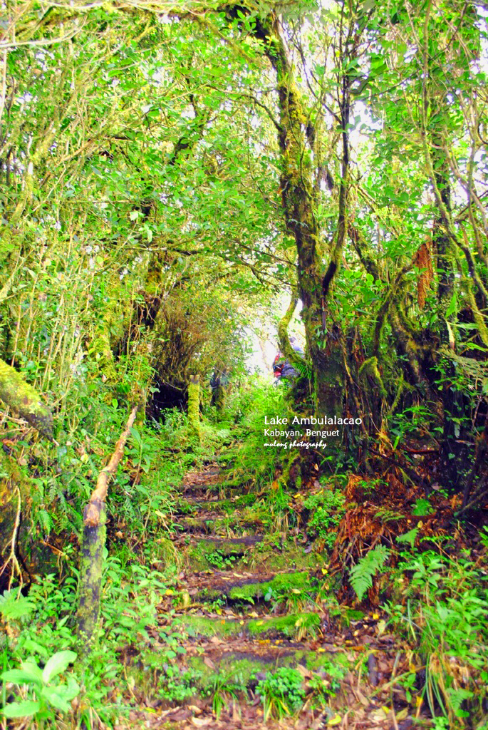 Trail in Tawangan