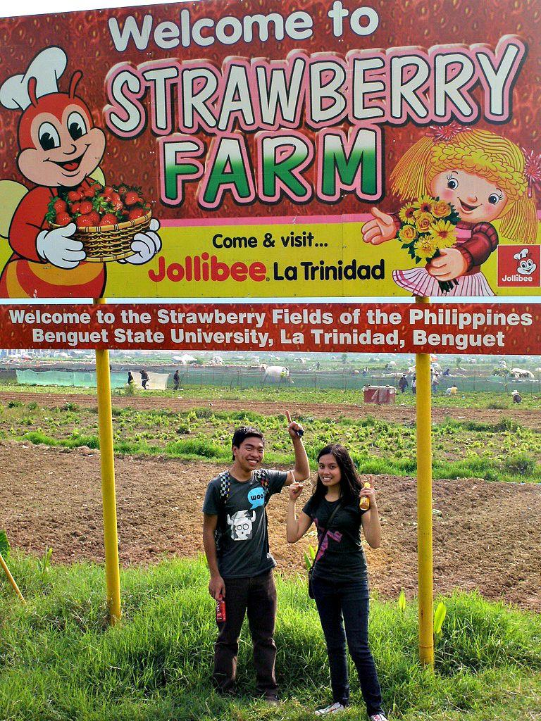 strawberry (12)