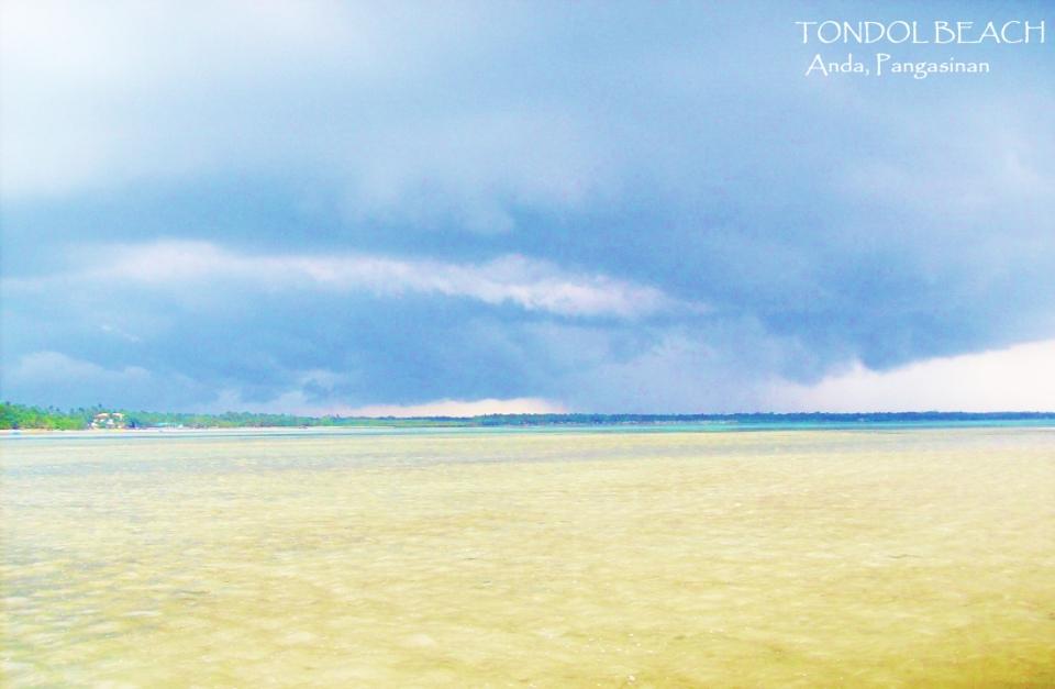 tondol (56)