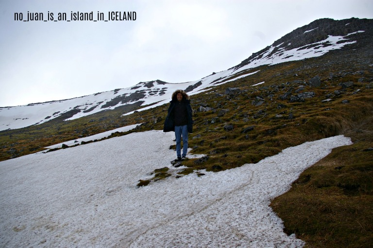 _iceland9